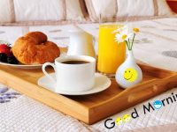 Best Good Morning wallpapers Collections