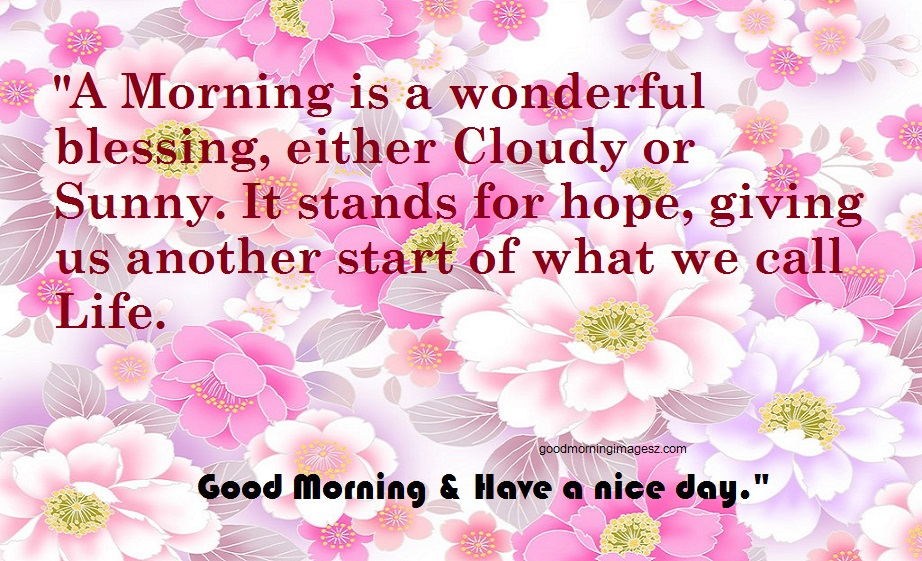 Best folwers Good Morning Quotes images download