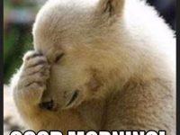 Dog Good Morning Meme images download