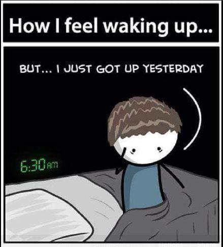 Funny Good Morning Meme images gif
