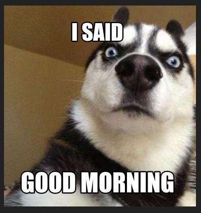 Funny Good Morning Meme images download