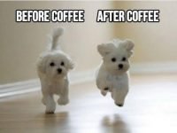 Funny cool coffee meme images