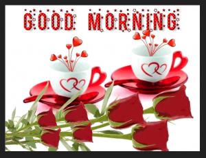 Good Morning Flower photos