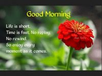 Good Morning SMS Text Messages Quotes Wishes Collections