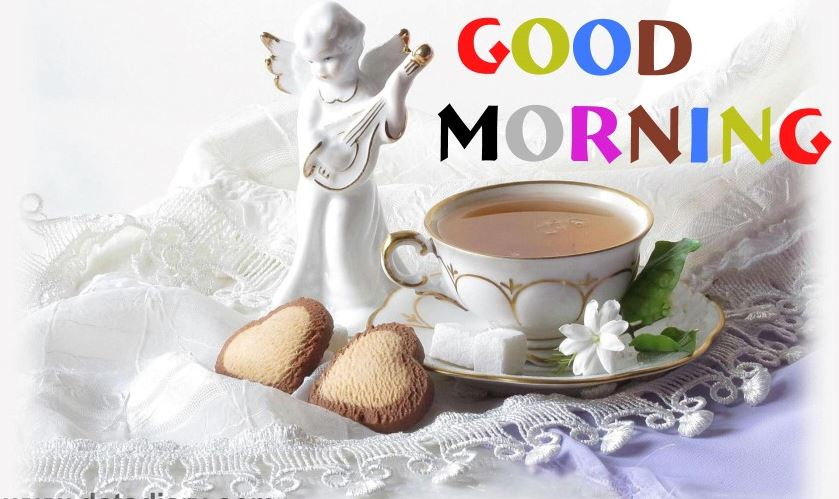 Good Morning Hd Wallpaper Download Good Morning Images