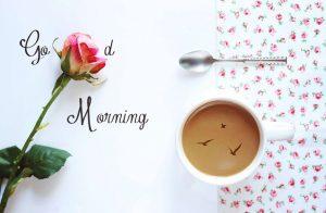 Good Morning hd wallpapers free