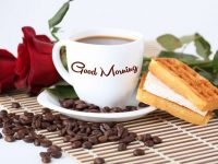 Good Morning wallpapers hd download