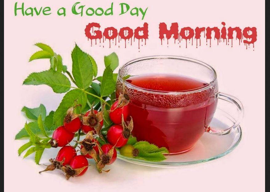Good Morning hd wallpapers free Download Pics