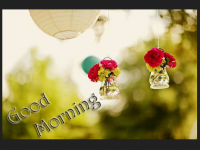 Good Morning wallpapers hd free