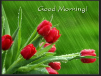 Good morning raining images