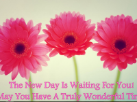 GoodMroning Pink Flowers Quotes images