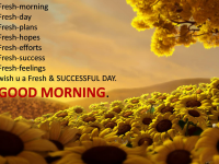 Wish You Successful Day Good Morning photo Download