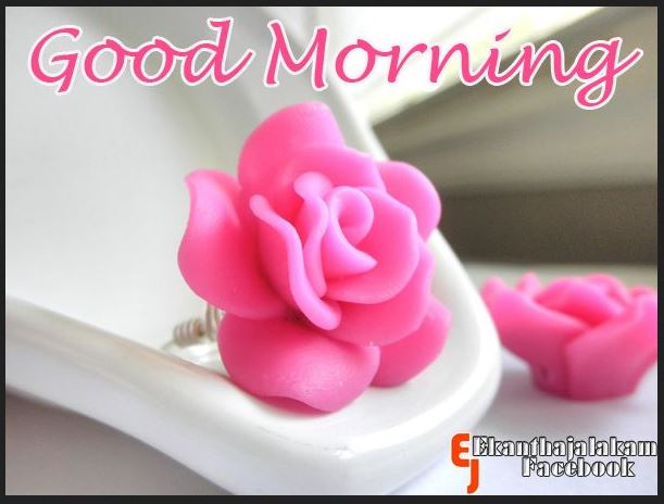 cute good morning images for friend card