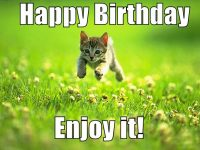 Funny cute Happy birthday memes