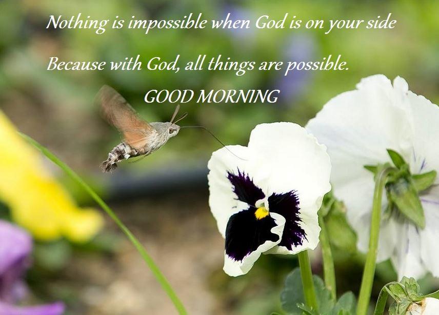 Good morning marathi pictures