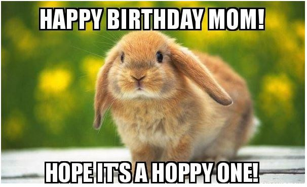 Mom cute birthday meme collections