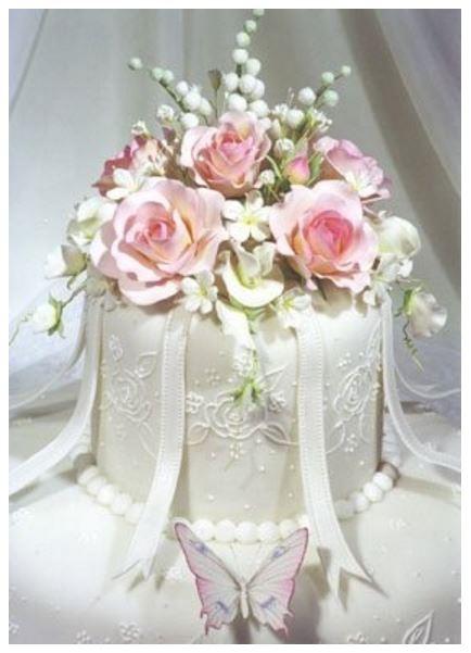 princess cake images