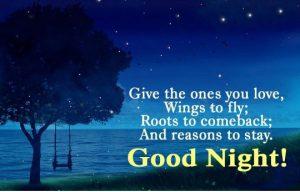 Romantic good night shayari for boyfriend