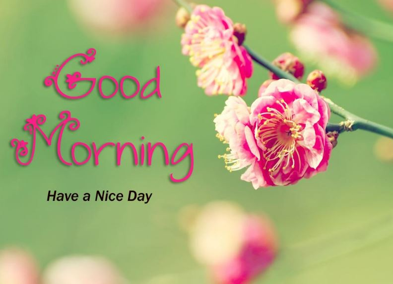 Good Morning Marathi Images Wallpapers Quotes Sms Download