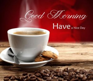 Whatsapp good morning image free download