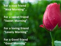 Best Good Morning Quotes for Friend with images